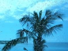 激しい雨が