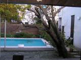 お庭にはプールも