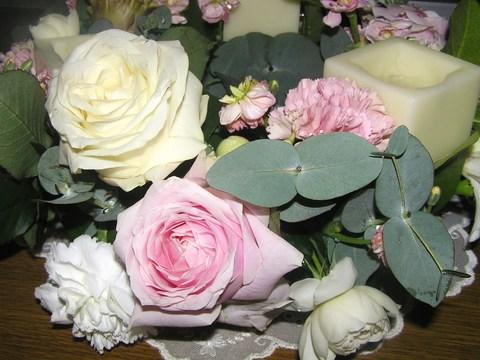 綺麗なバラ