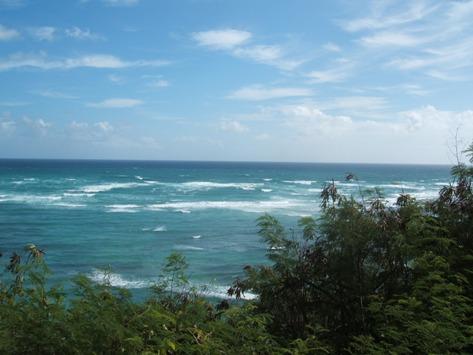 ハワイのきれいな海
