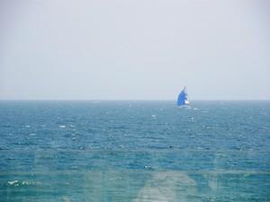 bills前の海