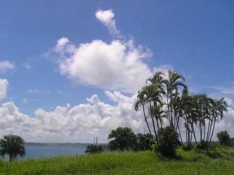 沖縄は晴天です!