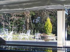 窓からのお庭1