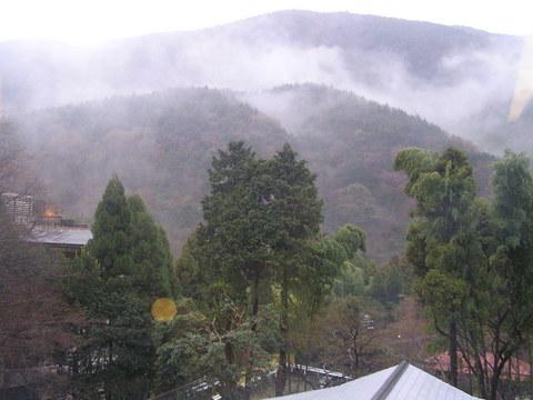湯河原「海石榴」霧の朝