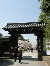 仁和寺です