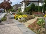 沿道の花壇