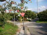 りんごと栗