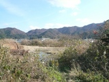 小浜土地1