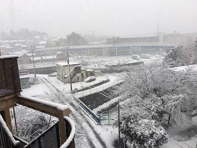 2018雪 (5)