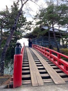 松島 (9)
