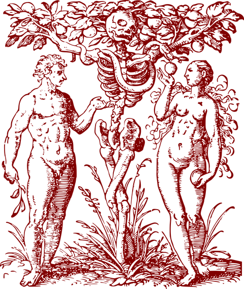 adam-and-eve-1649339_1920
