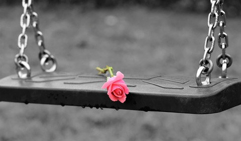 pink-rose-on-empty-swing-3656894_1920