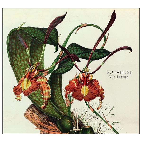 botanist-vi-flora