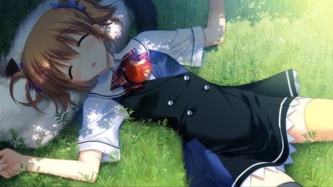 【二次画像】この女の子が気持ちよさそうにすやすやお昼寝しててらどうする?