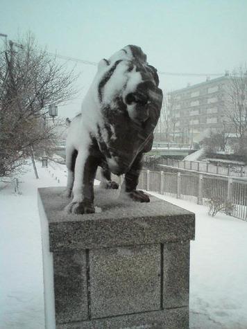 冬のいライオン