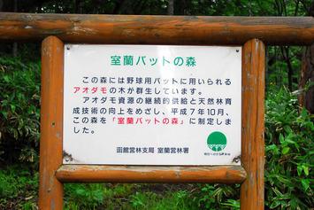 バットの森4