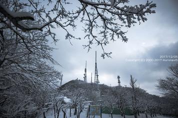 雪の日の朝の測量山