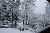 DSC00386大雪