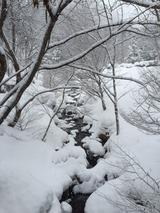 雪景色1IMG_0796