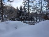 雪景色IMG_1018