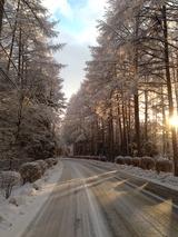 雪景色'写真