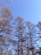 今日の空写真-58