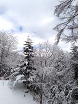 雪景色2写真-1