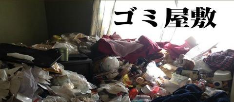 800-350-77 ゴミやしき