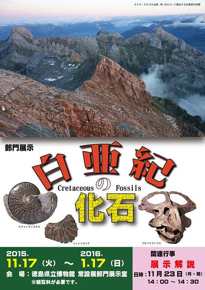 cretaceous_fossils