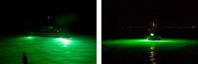 企画展「光で魚を捕る漁業」