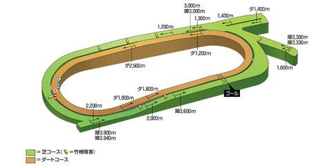 中京コース立体図