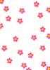 桜濃いピンク