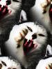 恐怖の猫様待ち受け (3)