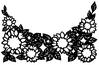 白黒花と葉