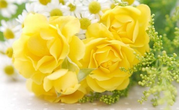 flower-yellow-640x395
