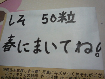 P1070833