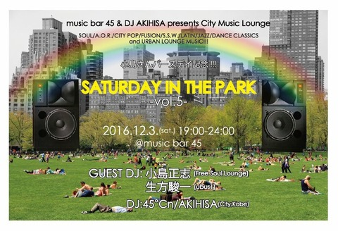 Sat Dec 03 2016 [DJ] Saturday in the Park vol.5
