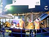 さいたまスーパーアリーナ('11.12.10撮影)