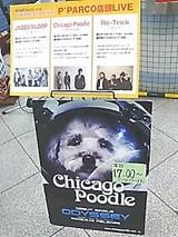 店頭ライブ告知@池袋パルコ('09.4.12撮影)