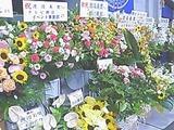 お祝いの花々