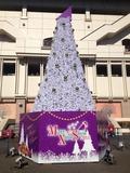 有明コロシアム('14.12.14撮影)