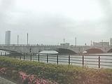 萬代橋('08.6.7撮影)