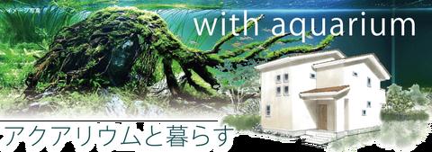 20170325kansei