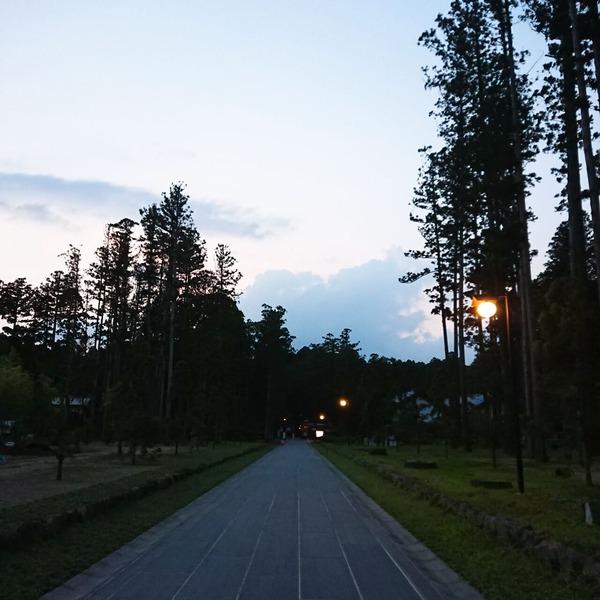 20-08-04-18-53-14-637_photo