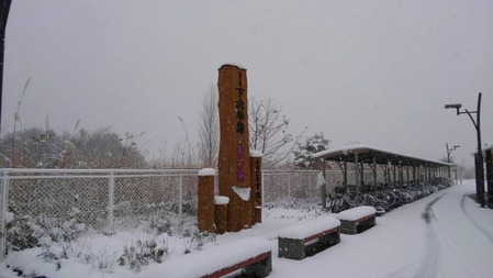 一直在下雪⛄