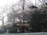 fudou1