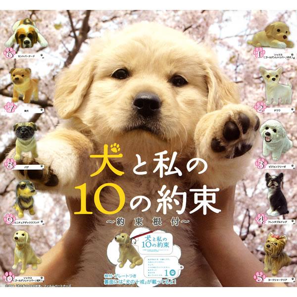 映画|犬と私の10の約束の動画をフルで無料視聴す …