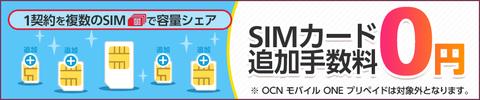 bnr_add_sim