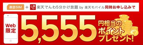 950x300_sim_pointback_5555