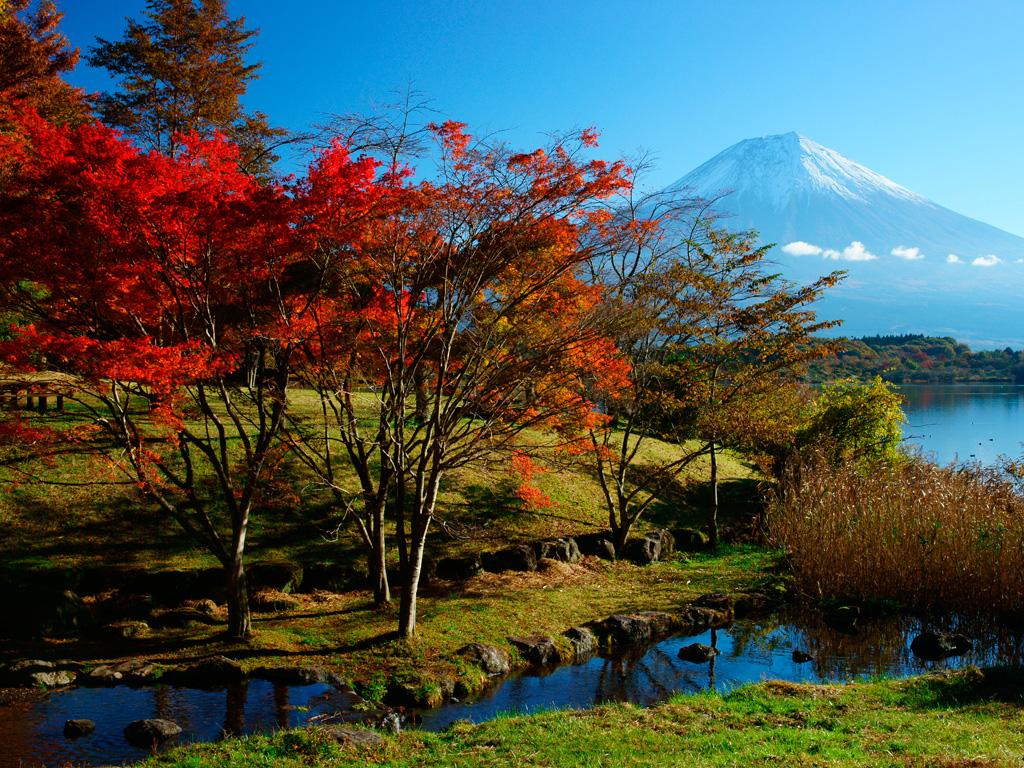 【速報】日本列島、秋になる